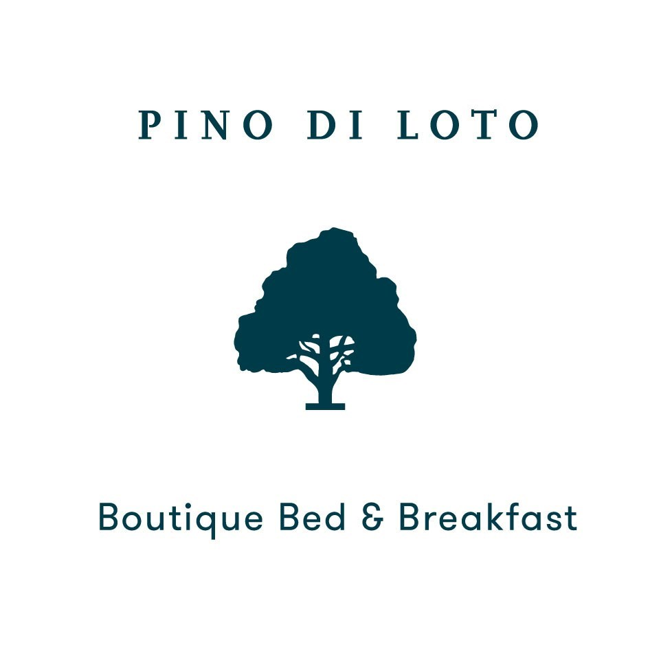 Boutique hotel in Syros Job Opening :  Barista - Service/Reception Assistant for Summer Season 2022 / Full Time