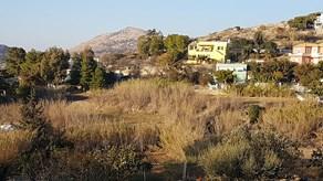 Πωλείται οικόπεδο εντός οικισμού στην Παρακοπή 2.190 στρεμμάτων