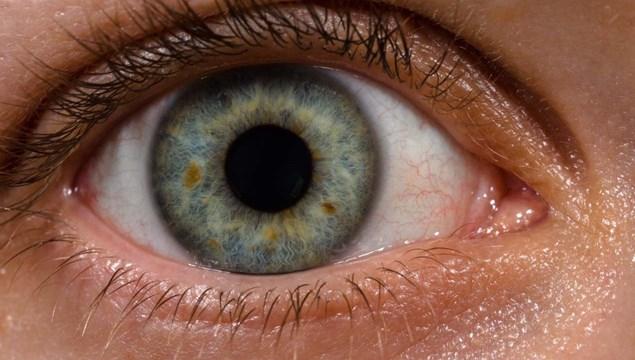 Παγκόσμια εβδομάδα όρασης   (Κατά της τύφλωσης)