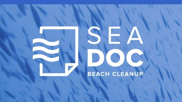 Sea Doc: Η νέα εφαρμογή του Κοινωφελούς Ιδρύματος Αθανασίου Κ. Λασκαρίδη καταγράφει τα απορρίμματα των ακτών