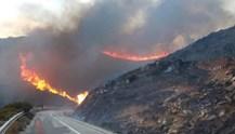 Άνδρος: Αίτημα για οικονομική ενίσχυση μετά τις πυρκαγιές
