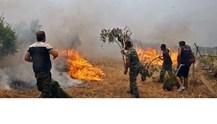 Συναγερμός σε 17 νομούς για κίνδυνο πυρκαγιάς
