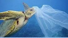 3 Ιουλίου: Παγκόσμια Ημέρα κατά της χρήσης της πλαστικής σακούλας