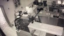 Στη φάκα της ΕΛ.ΑΣ ο «Κόκκορας» και ο «Μακρυχέρης» της Μυκόνου