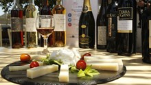 """Νάξος: Οινογαστρονομική εκδήλωση στο πλαίσιο του """"Mediterranean Cheese & Wines"""""""