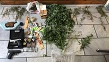 Σύλληψη για καλλιέργεια δενδρυλλίων κάνναβης και παράνομη οπλοκατοχή