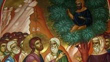 Ο Ιησούς και ο Ζακχαίος (Λουκ. 19, 1-10)