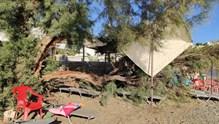 Τραυματισμός λουόμενης από πτώση δέντρου