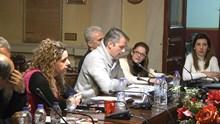 Συνεδρίαση Δημοτικού Συμβουλίου - Δασικοί χάρτες
